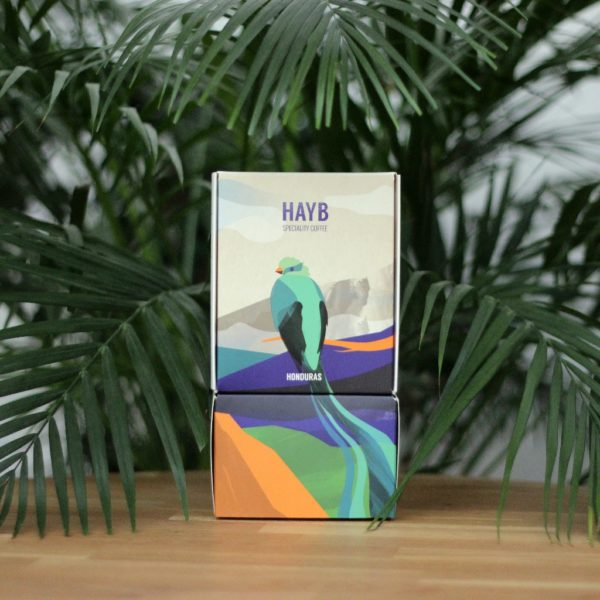 Gwatemala Ericka Sanchez - HAYB Coffee