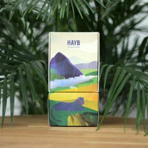 Kawa Speciality Brazylia HAYB