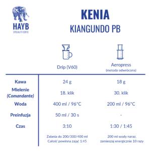 Jak zrobić: Kenia Kiangundo PB