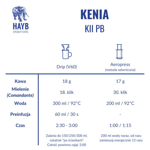 Jak zrobić: Kenia Kii PB - HAYB Speciality Coffee