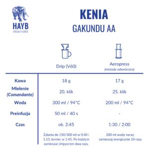 Jak zrobić: Kenia Kagundu AA