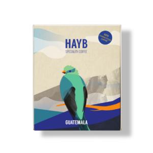 Kawa Competition z Gwatemali - HAYB